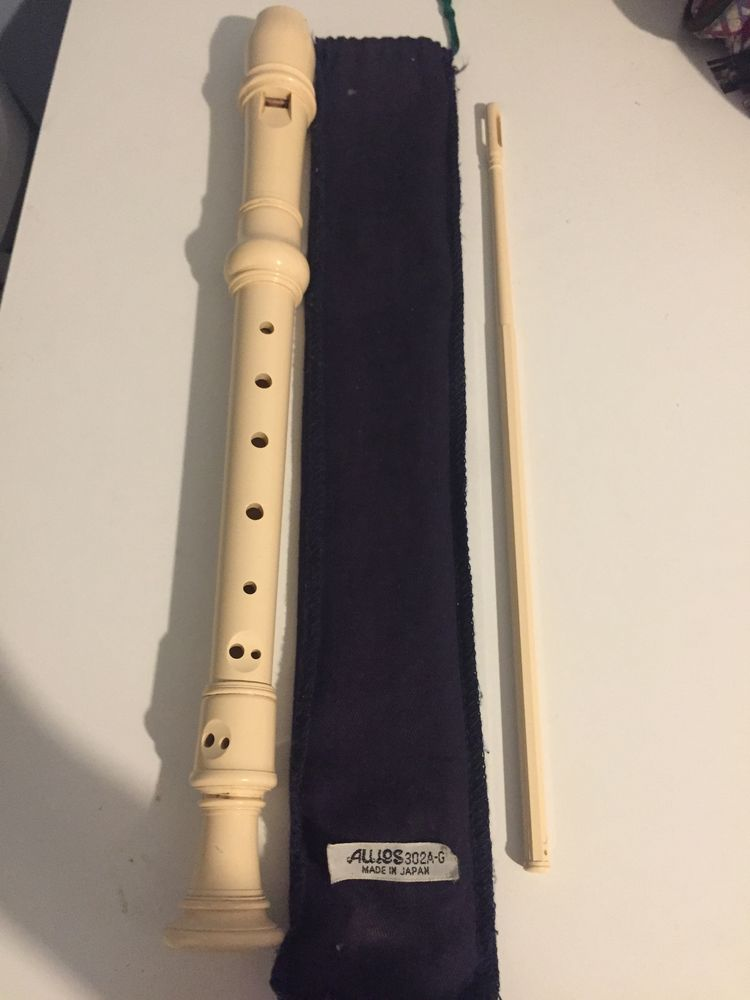 flûte école 10 Lyon 1 (69)