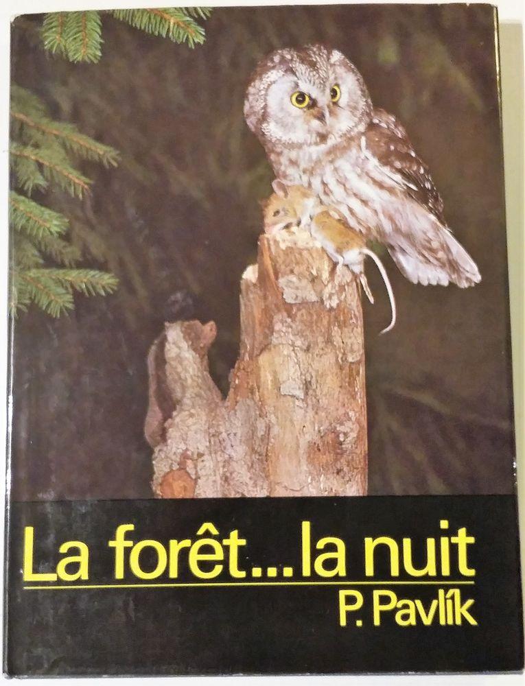 La forêt... la nuit 1 Bougival (78)