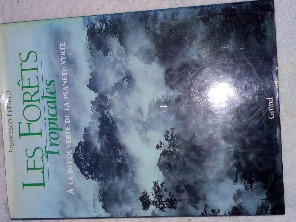 les forets tropicales 15 Pluneret (56)