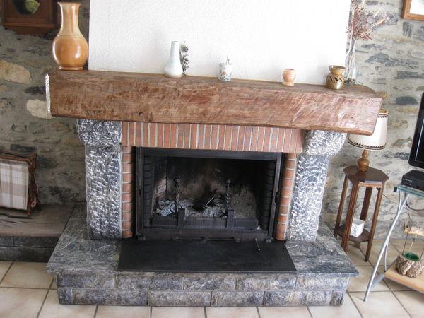 Achetez foyer insertà bois occasion, annonce venteà Lannemezan (65) WB150764520 # Les Meilleurs Inserts Bois