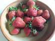 10 fraisiers remontants  bio 6 Mortain (50)