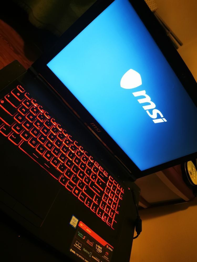 PC Gamer Portable MSI 600 Fontainebleau (77)