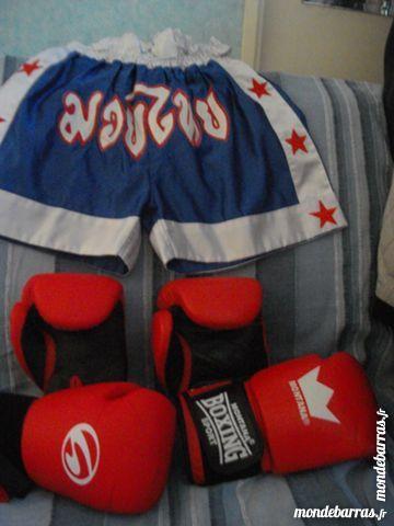 gants boxe 25 Palaiseau (91)