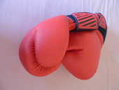 Gants de boxe 8 Ploudaniel (29)