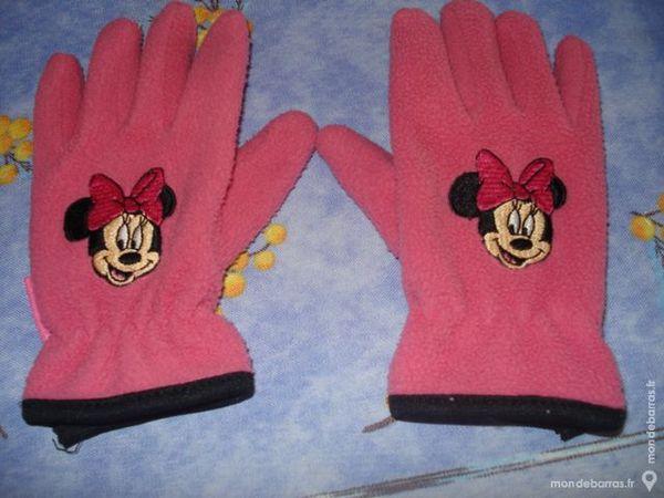 gants polaires 2 Saint-Fargeau-Ponthierry (77)
