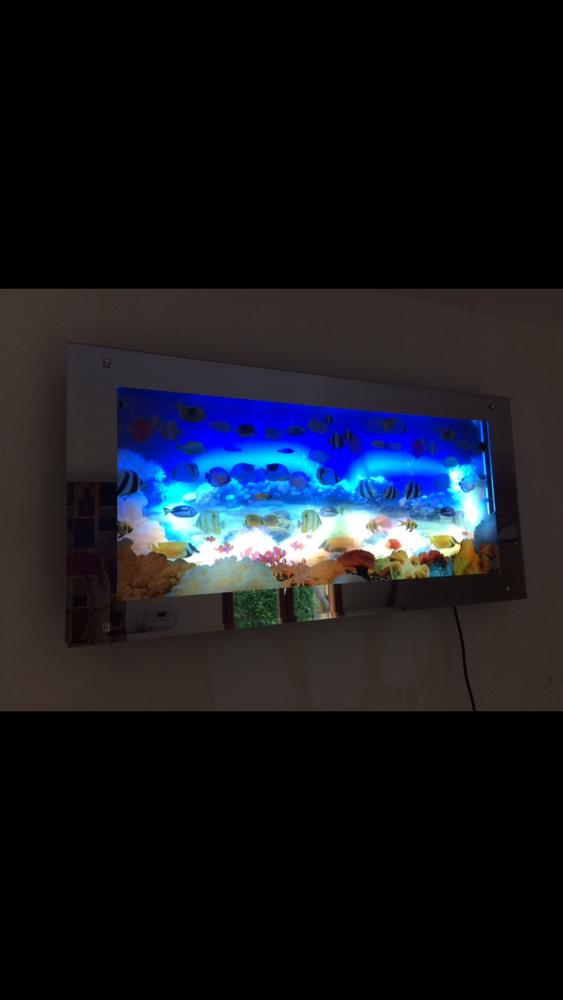 Grand cadre lumineux aquarium poissons 40 Uckange (57)