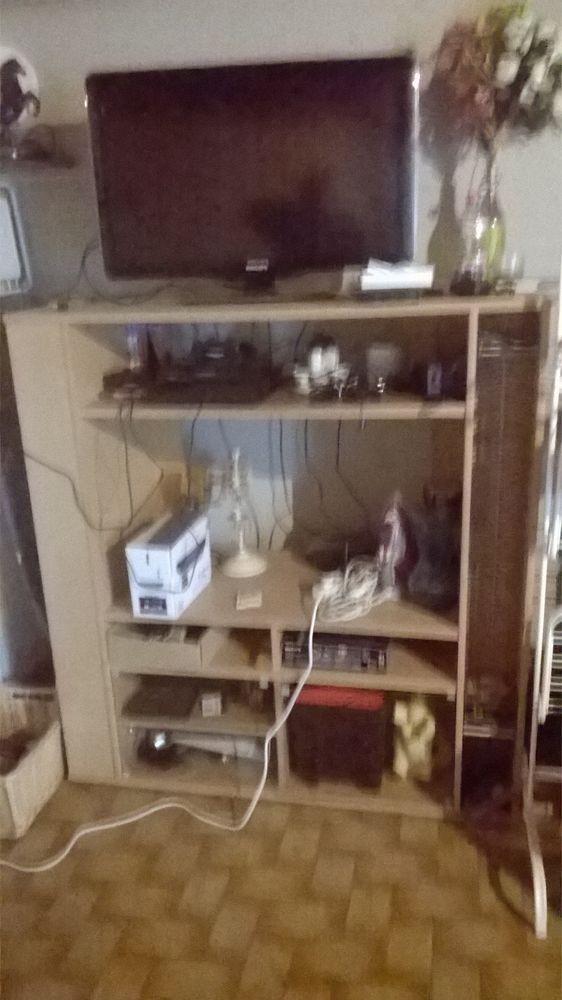 grand meuble télé 50 Plabennec (29)