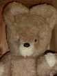 Grand ours en peluche vintage pour collection