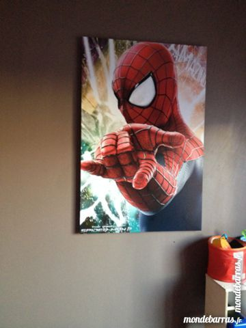 Grand tableau Spiderman 25 Arnage (72)