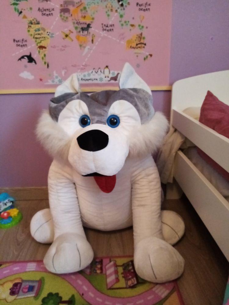 Grosse peluche chien 10 Sin-le-Noble (59)