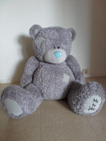 Grosse peluche ours 15 Nantes (44)