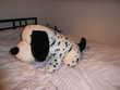 Grosse peluche Snoopy