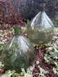 GROSSES DAME JEANNE de 20 et 15 L en verre vert