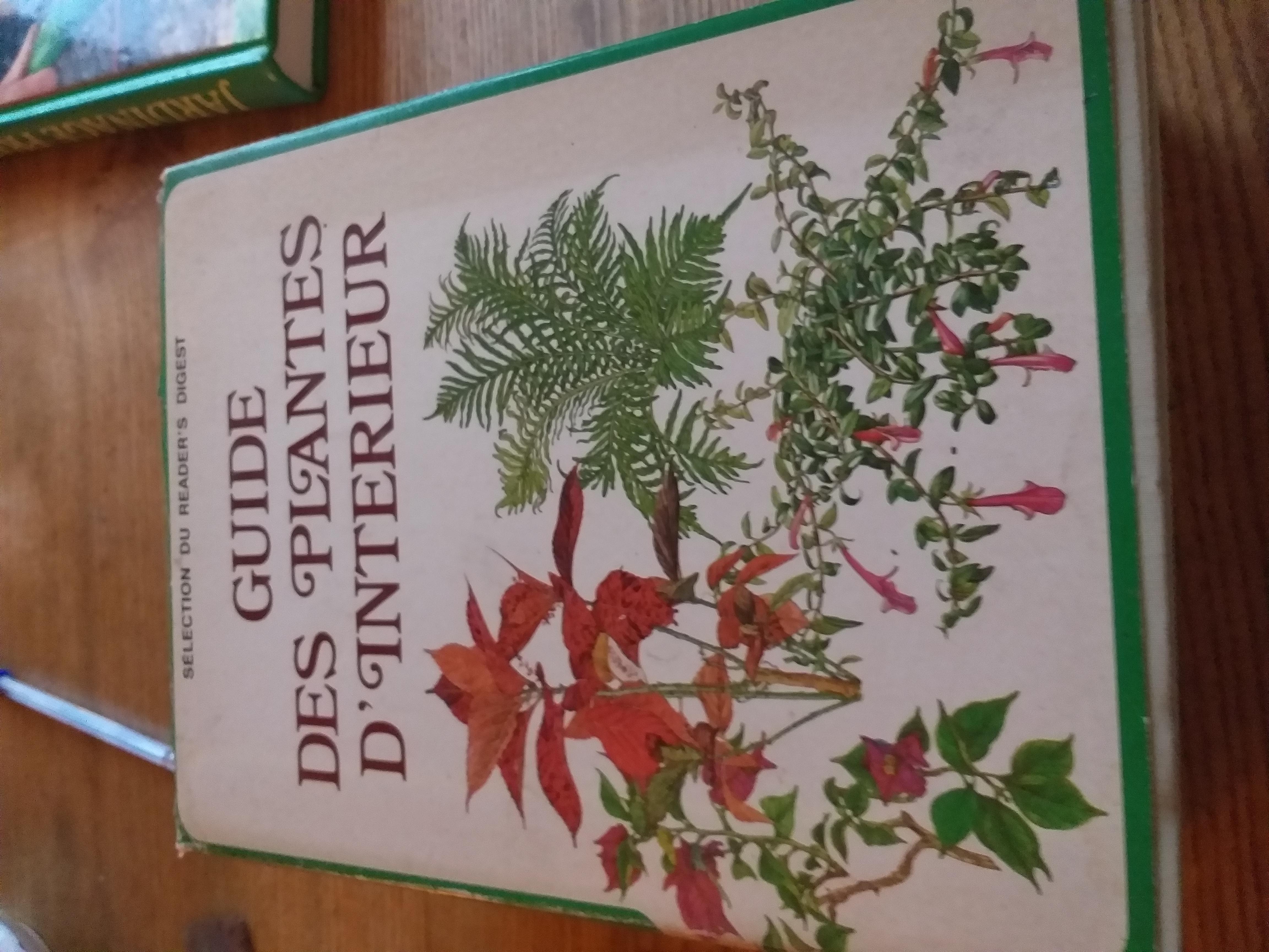 GUIDE DES PLANTES D INTÉRIEURS 15 Brignoles (83)