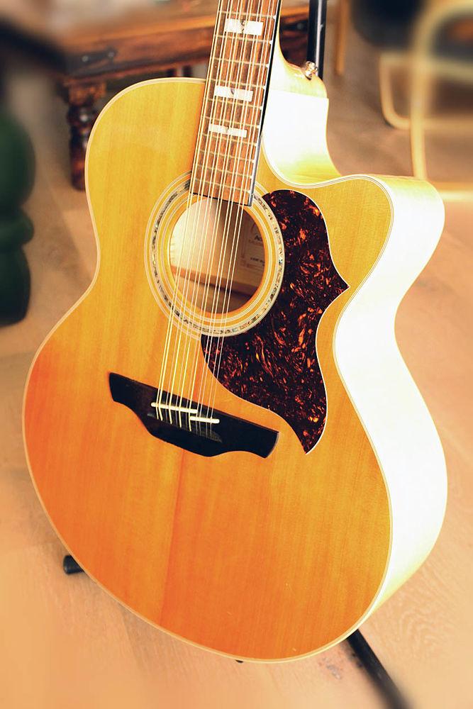 Guitare 12 cordes Takamine électroacoustique 550 Millau (12)