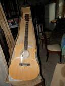 guitare folk 45 Terminiers (28)