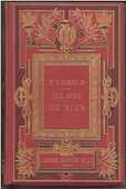 Mme Gustave DEMOULIN Les gens de bien - 1884  18 Montauban (82)