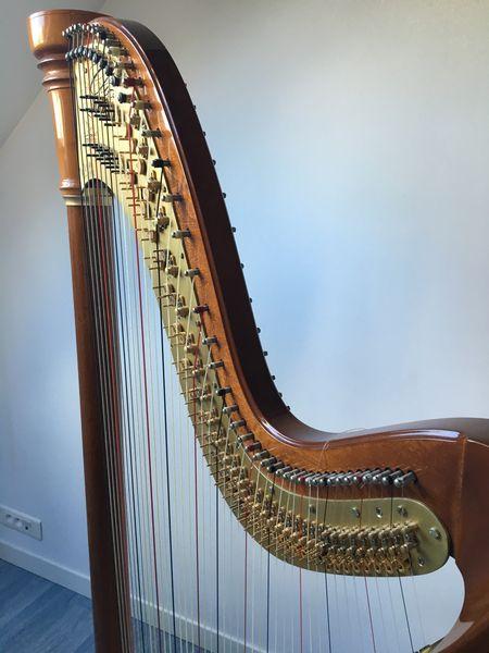 harpes occasion en le de france annonces achat et vente de harpes paruvendu mondebarras. Black Bedroom Furniture Sets. Home Design Ideas