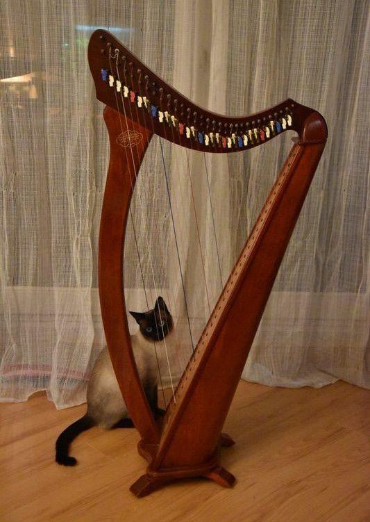 Harpe celtique Camac 950 Fossoy (02)