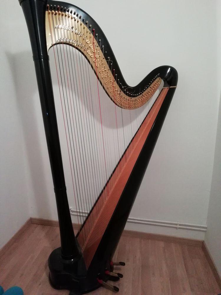 Harpe Salvi orchestra double mouvement Instruments de musique