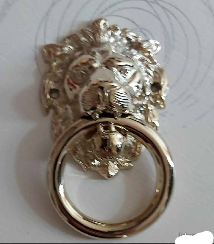 Heurtoir de porte d'entrée tête lion , en laiton poli Titane 50 Béthune (62)