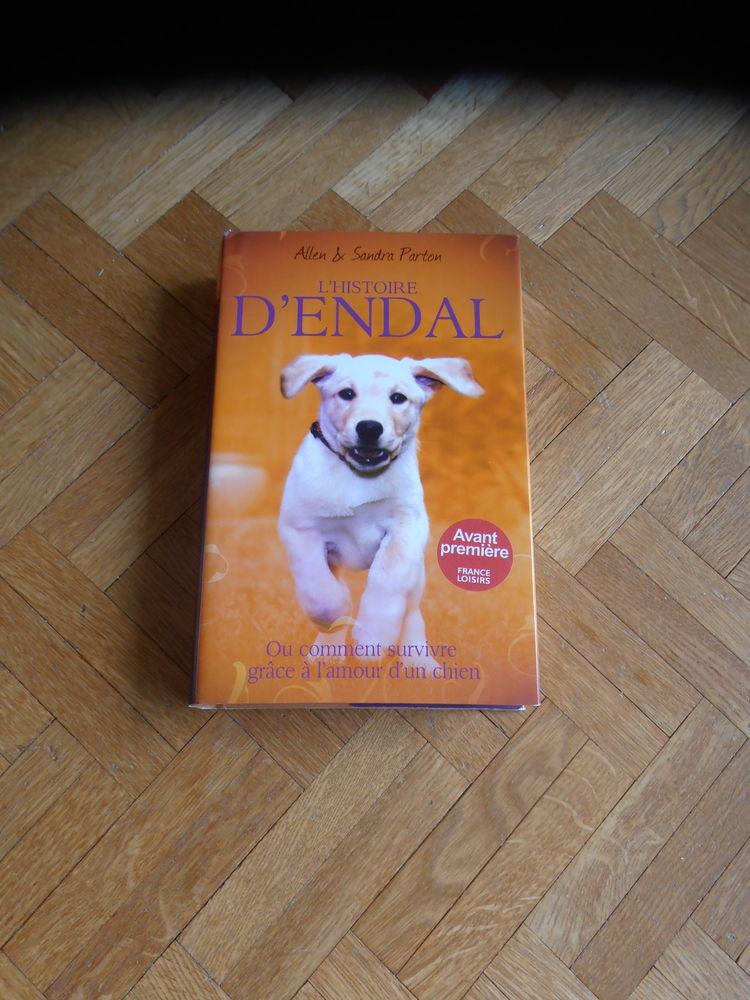 L'histoire d'Endal (88) 8 Tours (37)