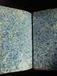 HISTOIRE des RÉVOLUTIONS ROMAINES Tome second 1818 Livres et BD