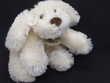 HO1387 doudou chien biscuit allongé crème Histoire d'ours