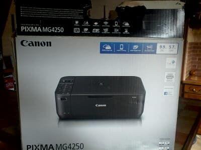 Imprimante canon Pixma MG4250 25 Thoré-la-Rochette (41)