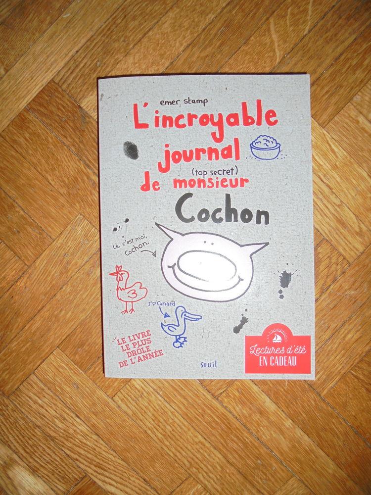 L'incroyable journal de Monsieur Cochon (98) 6 Tours (37)