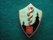 Insigne de Santé - 54° Bataillon Médical.