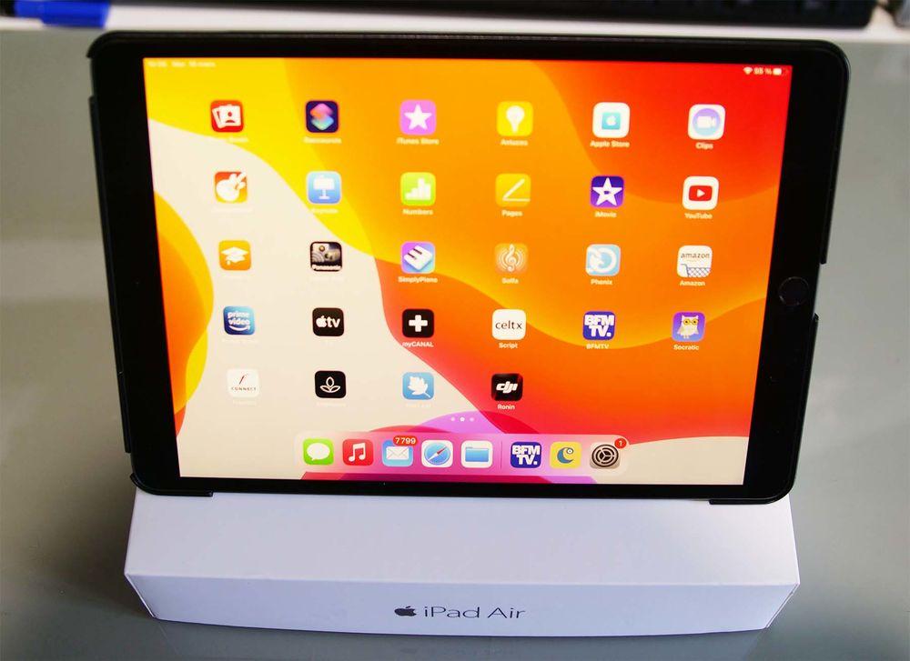 iPad Air 3 450 Luneray (76)