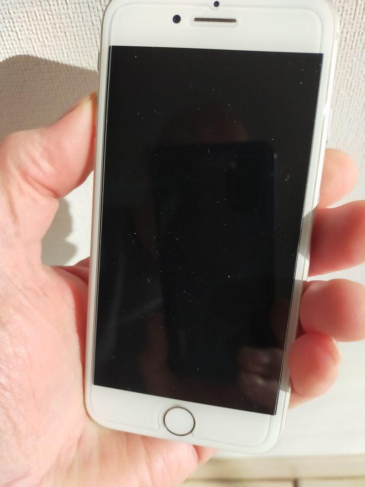iPhone 8 210 Camon (80)