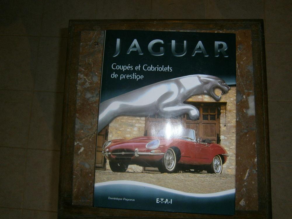 jaguard coupé et cabriolets de prestige 10 Corneillan (32)