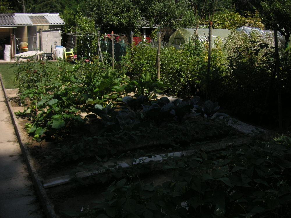 Achetez jardin de plantation occasion annonce vente riedisheim 68 wb155750420 for Jardin plantation