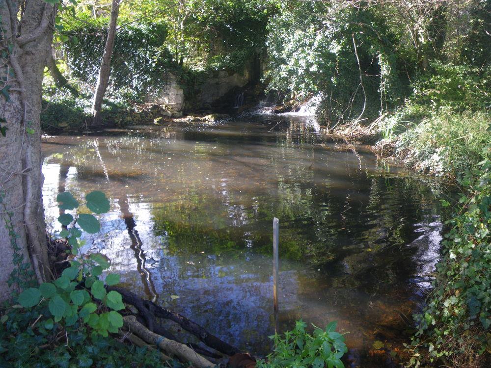 Jardins partagés à Castelnau de Médoc 0 Castelnau-de-Médoc (33)