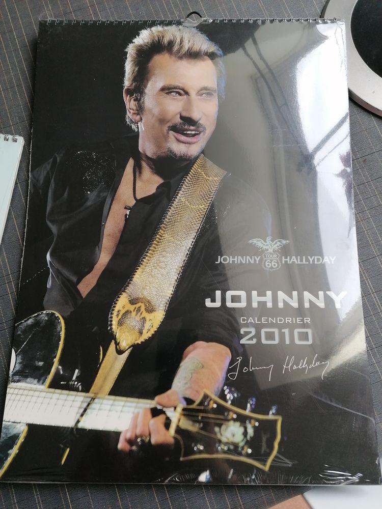 Johnny Hallyday 20 Cognin (73)