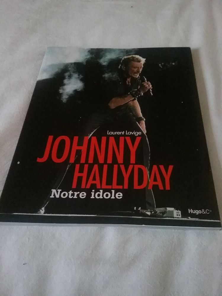 Johnny Hallydays vu par Laurent Lavigne 35 Louvres (95)
