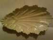 T jolie coupelle feuille aucun défaut porcelaine vintage Bosc-le-Hard (76)