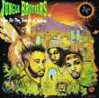 CD    Jungle Brothers   -   Done By The Forces Of Nature