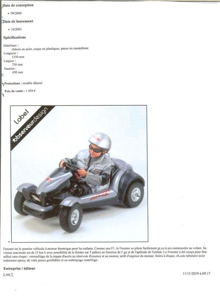 KART FREESTER voiture enfant 650 Saint-Laurent-de-la-Salanque (66)