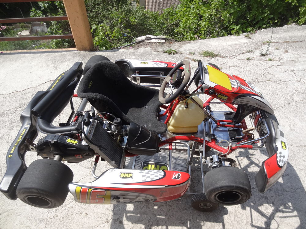 kart 125 rotax occasion