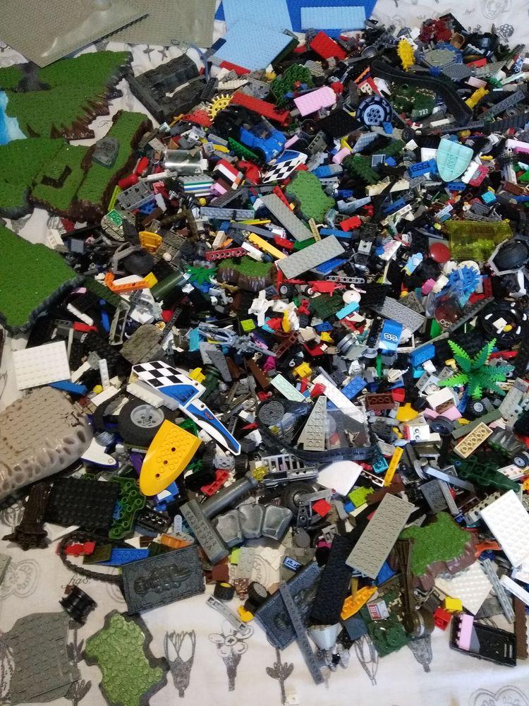 12 Kilos de Lego de toute sortes 271 Campagne (40)