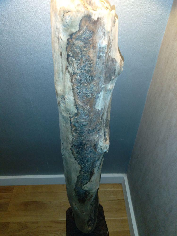 Lampe en bois flotter 12 Tourcoing (59)