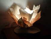 Lampe nénuphar 12 Orsay (91)