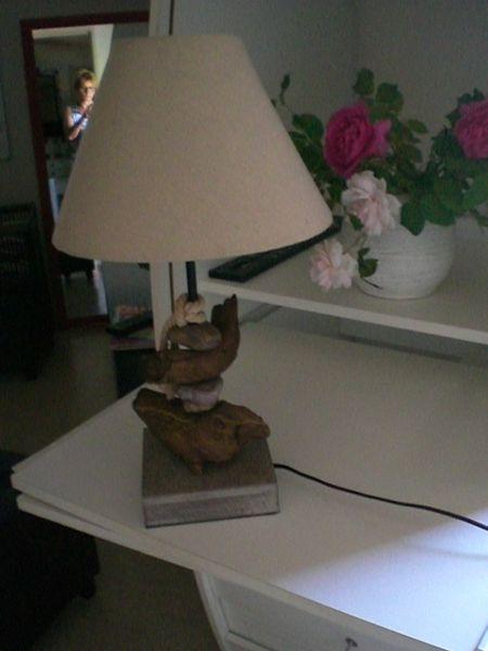 lampe 8 Ampuis (69)