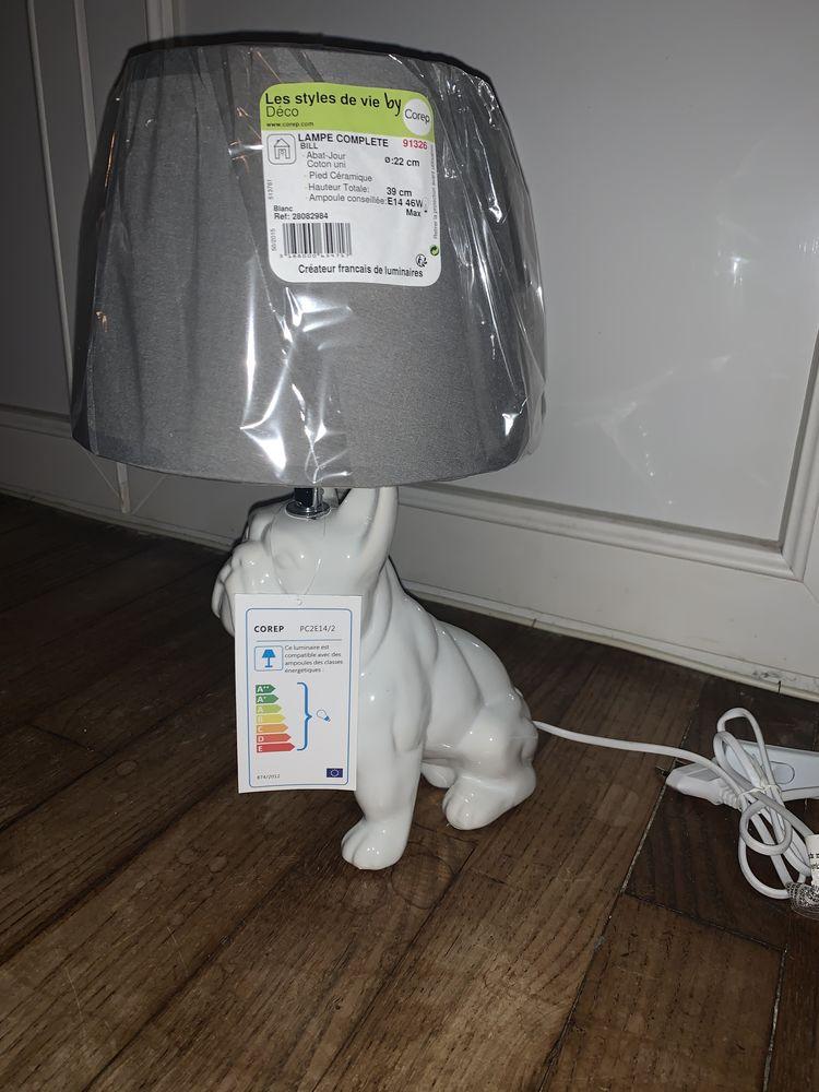 Lampes chien 40 Saint-Lô (50)