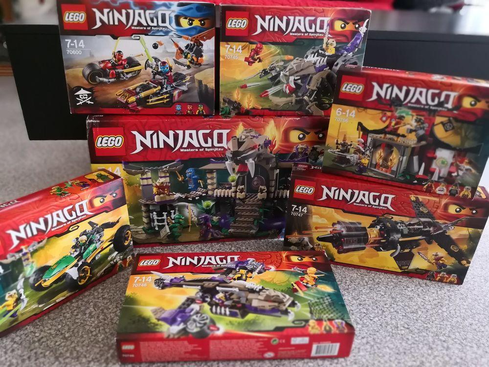 lego ninjago 25 Peujard (33)