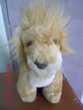 LION AJENA Oignies (62)