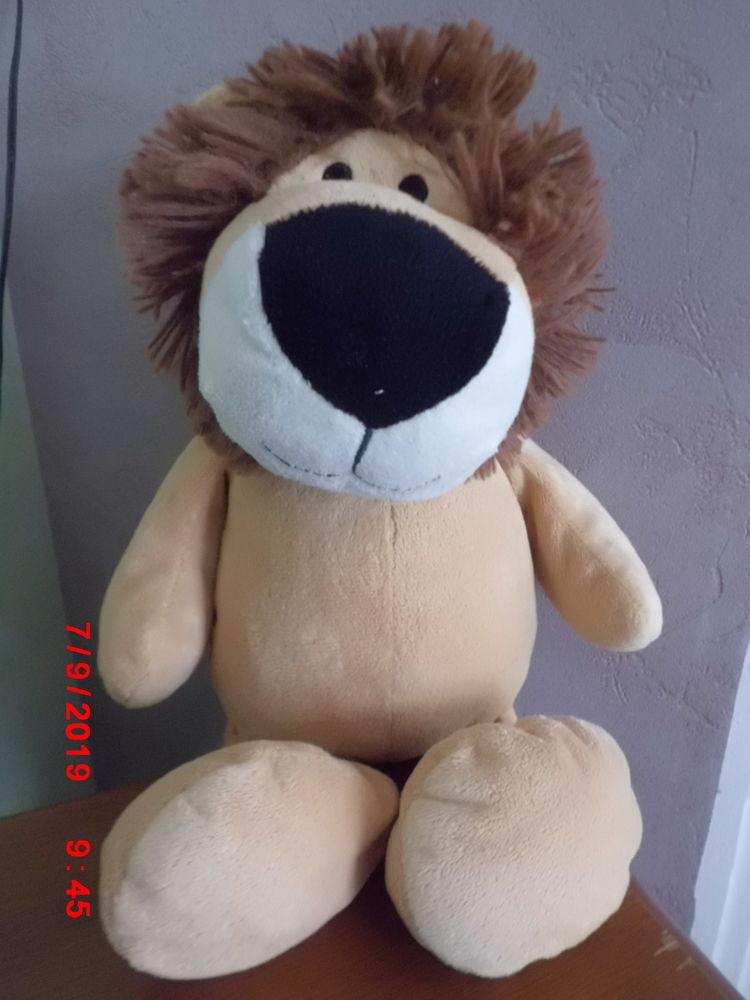 LION ZEEMAN 17 Oignies (62)